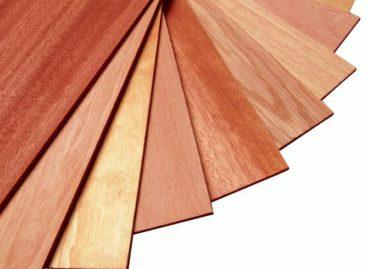 Gỗ phủ mặt từ gỗ cứng Hoa Kỳ (Phần 2)