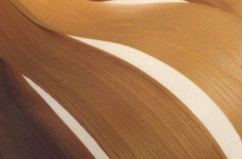Gỗ phủ mặt từ gỗ cứng Hoa Kỳ (Phần 3)