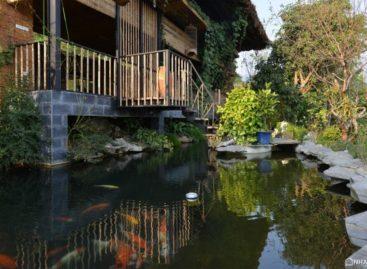 Hillside House – căn nhà trên đồi mơ mộng từ Toob Studio