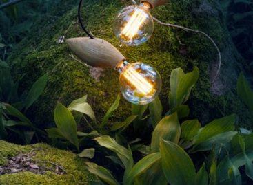 Những chiếc đèn độc đáo dành cho người yêu động vật