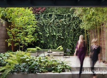 Thiết kế khu vườn của riêng bạn