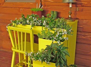 Làm đẹp sân vườn với những ý tưởng siêu tiết kiệm (Phần 2)